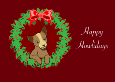 Chihuahua Holiday Card